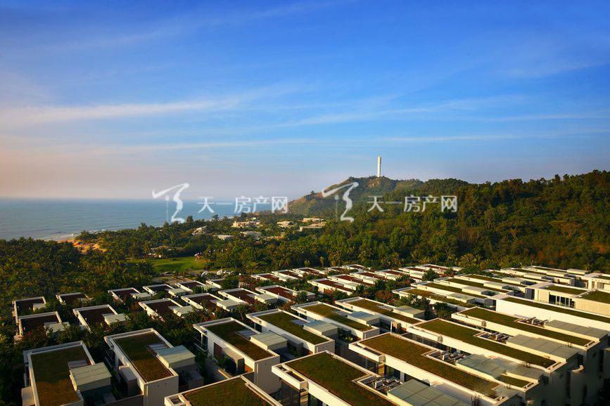 钻石海岸实景图17.jpg
